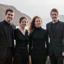 Sinopia String Quartette
